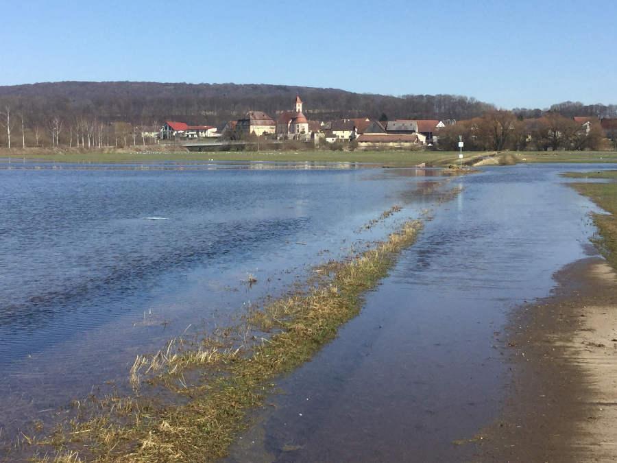Überschwemmung des Donauradwegs bei Riedlingen-Zell