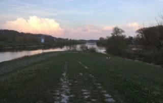 Kelheim Donauspitz Altmühltalradweg Altmühl fließt in Donau