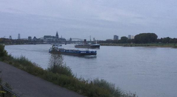 Rheinradweg Köln von weitem