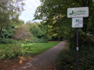 Ludwigshafen-Oggersheim Rheinradweg Rheintour