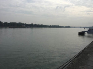 Mainz Rheinradweg - Blick zurück