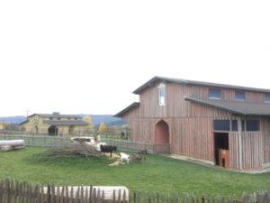 Ehemaliger Kamelhof Rotfelden - Freizeitpark Rotfelden