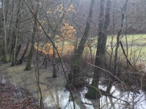 Zwischen Aichtal und Dettenhausen - Schaichtal - Hohenzollernradweg