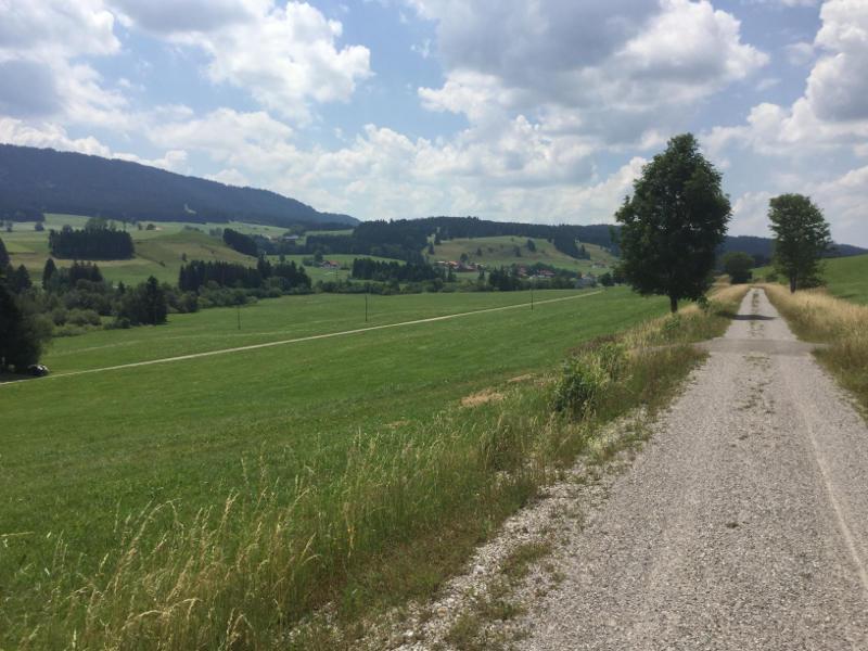 Zwischen Weitnau und Buchenberg - Auf dem Allgäu-Radweg - Schöne Landschaft