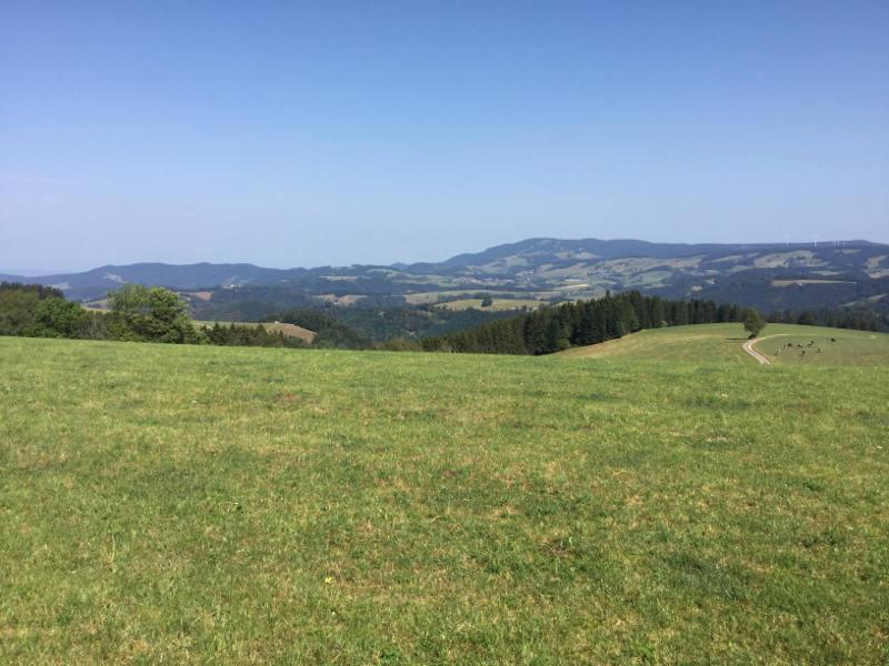 Schwarzwald Radtour - Breitnau beim Naturfreundehaus