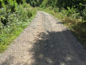 Schotterweg Griesdobelweg Buchenbach Schwarzwald-Radtour