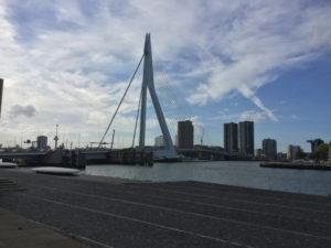 Erasmusbrug Rotterdam - Sehenswürdigkeit - Rheinradweg Rotterdam