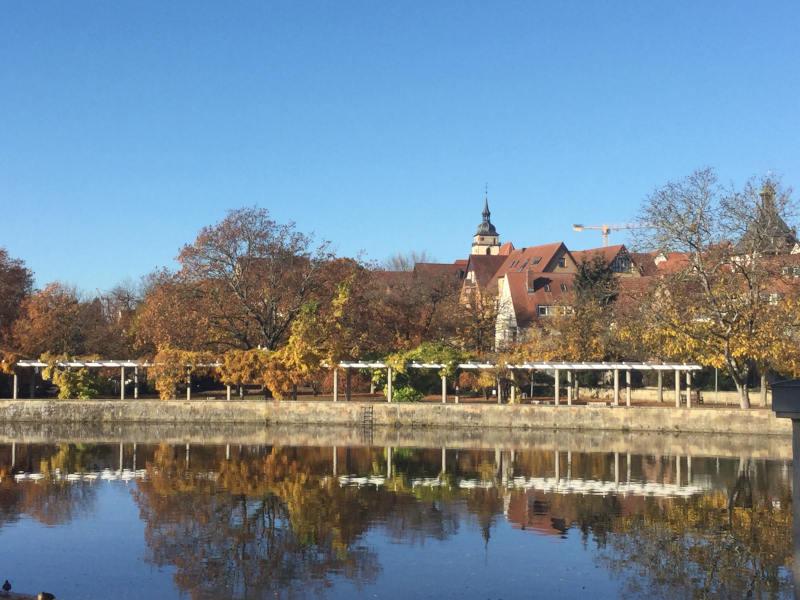 Bietigheim-Bissingen im Herbst - Stromberg-Murrtal-Radweg