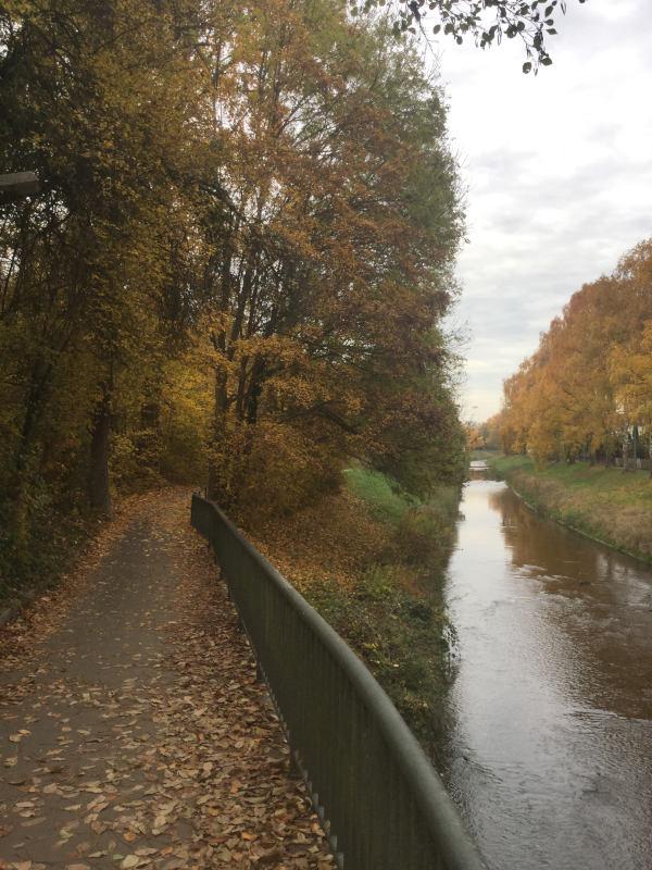 Grötzingen bei Karlsruhe - Pfinz - Pfinztalradweg - Herbst - Stromberg-Murrtalradweg