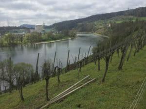 Böttstein - Aare-Blick - Aare-Radweg