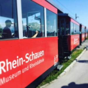 Rhein-Schauen am Rhein - Bodenseeradweg zwischen Hard und Fußach