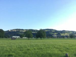 Landschaft nach dem Rheindelta vor Gaißau und vor Rheineck - Bodenseeradweg