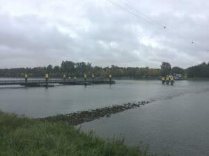 Seltz Plittersdorf - Fähre - Rhein - französischer Rheinradweg