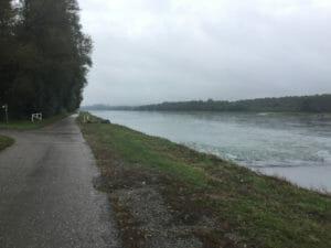 Lauterbourg - Blick auf den Rhein - Rheinradweg - Véloroute Rhin
