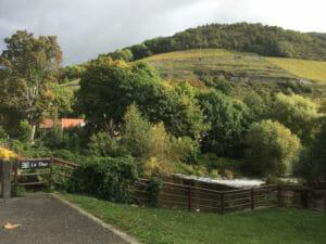Stadt Thann - Fluss Thur - Weinberge - Radfahren im Elsass