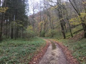 Zwischen Blaubeuren und Heroldstatt - den Berg hinauf mit dem Rad