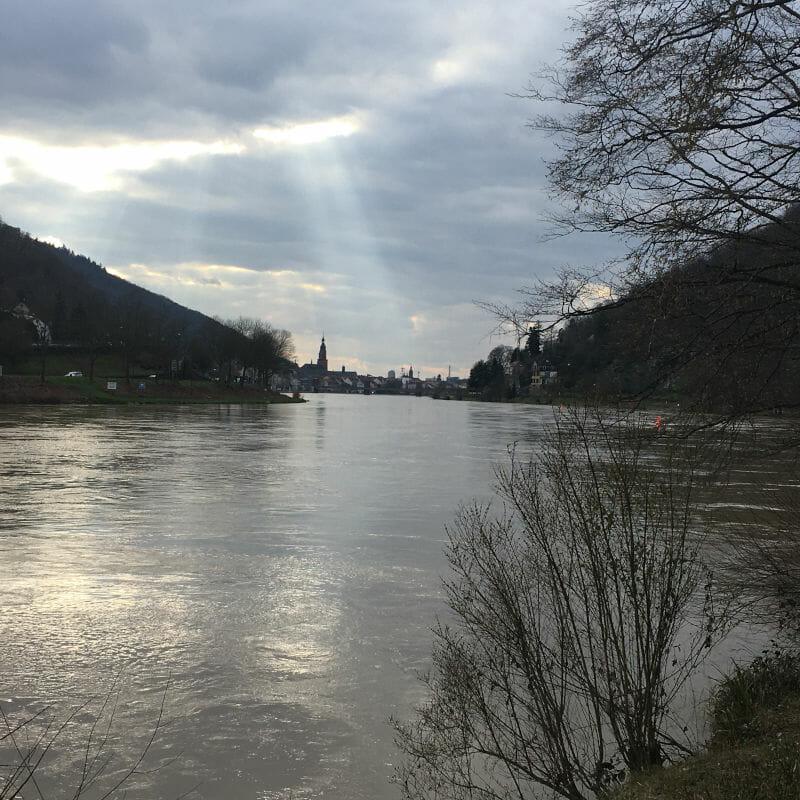 Neckar an der Abendsonne - Odenwald-Madonnen-Radweg - Neckarradweg