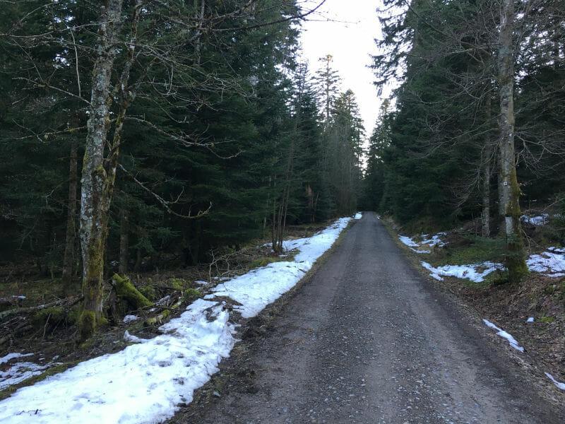 Zwischen Loßburg und Freudenstadt liegt Schnee - Schwarzwald-Panorama-Radweg