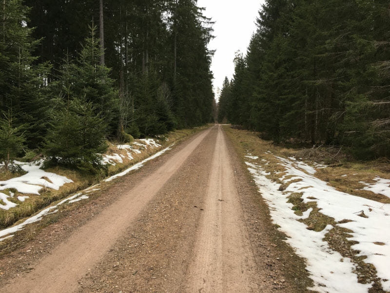 Waldradweg - Unterbränd - Titisee-Neustadt - Schwarzwald-Panorama-Radweg