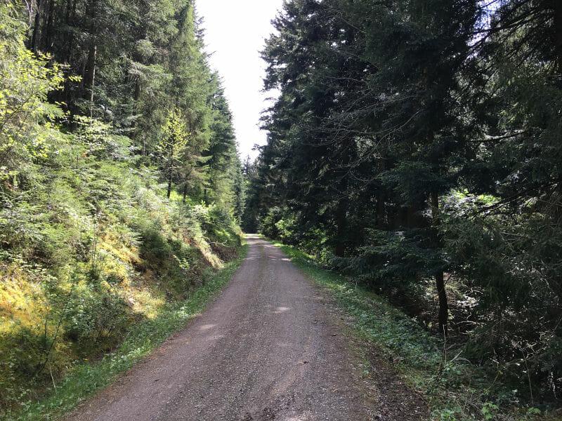 Alpirsbach Abfahrt Schwarzwald Kinzigtalradweg - Gravel-Tour