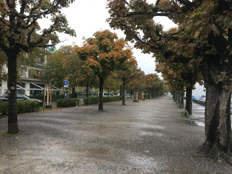 Zürich Allee - Neben dem See