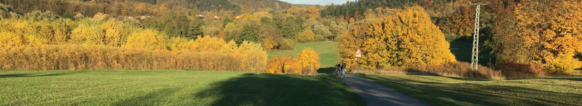 Bad Berka Ilmtalradweg - Thüringer Wald