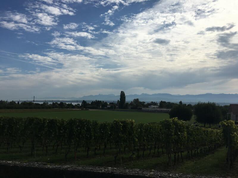 Aussicht bei Founex auf den Genfer See.