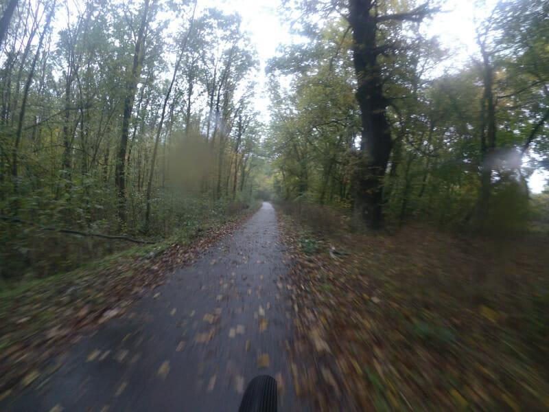 Asphaltierter Radweg zwischen Vockerode und Dessau.