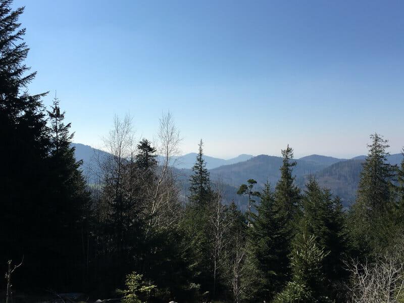Aussicht auf dem Radweg hinter Dobel - Schwarzwald-Radweg