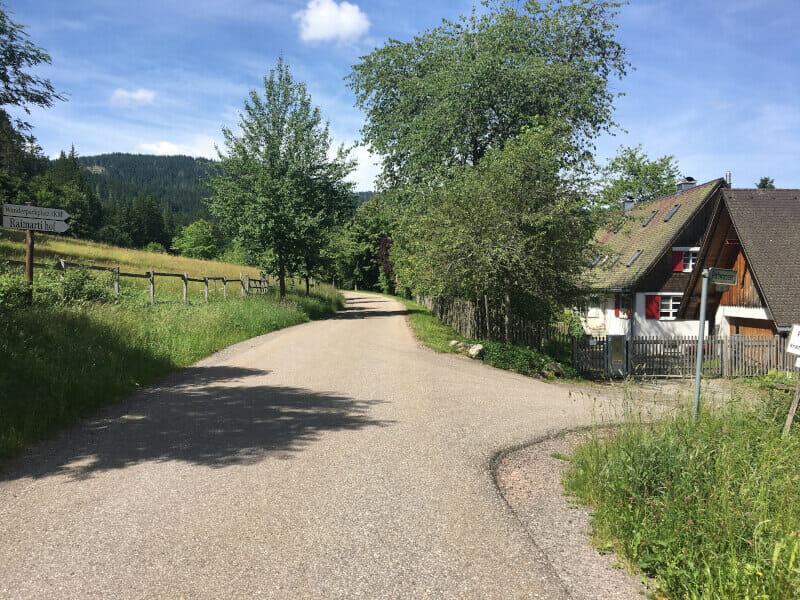 Bärental - Feldberg - schöner Radweg.